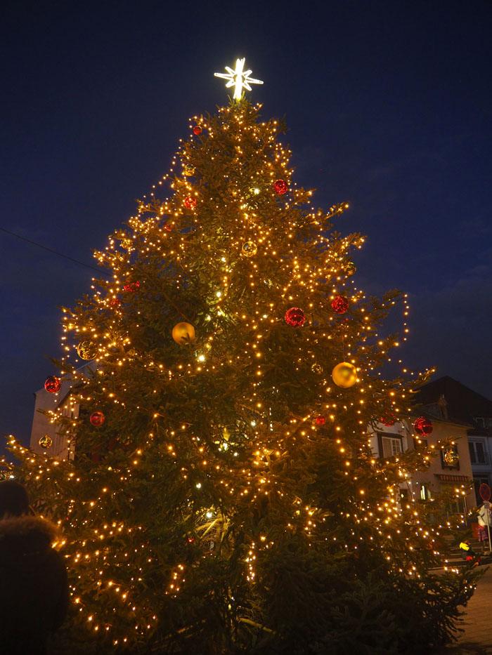 Bendorf – Weihnachtsbaum erstrahlt in voller Pracht