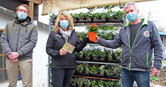 Amt für Stadtmarketing verteilt Blumen an Senioren