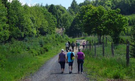 Familien erleben den Wald als Kraft- und Erholungsort – Stadtteilbüro bietet eine Exkursion in den Naturpark an